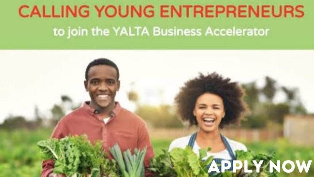 YALTA Business Accelerator 2021
