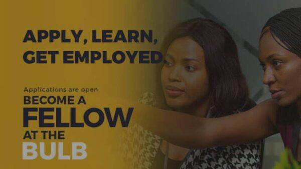 Bulb Fellowship Scheme 2021